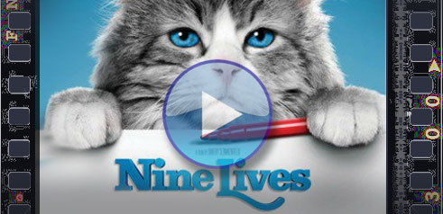 nine lives full movie download with english subtitles